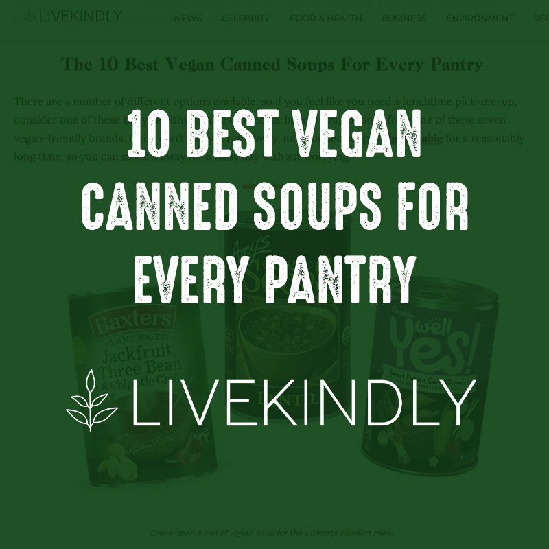10 Best Vegan Canned Soups for Every pantry - LiveKindly